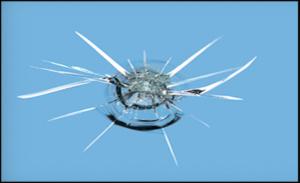 Windshield Chip Repair